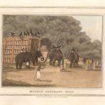 caza-del-elefante-hindu
