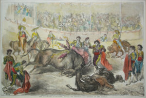 Toros / Bullfighting
