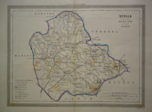 Sevilla y provincia